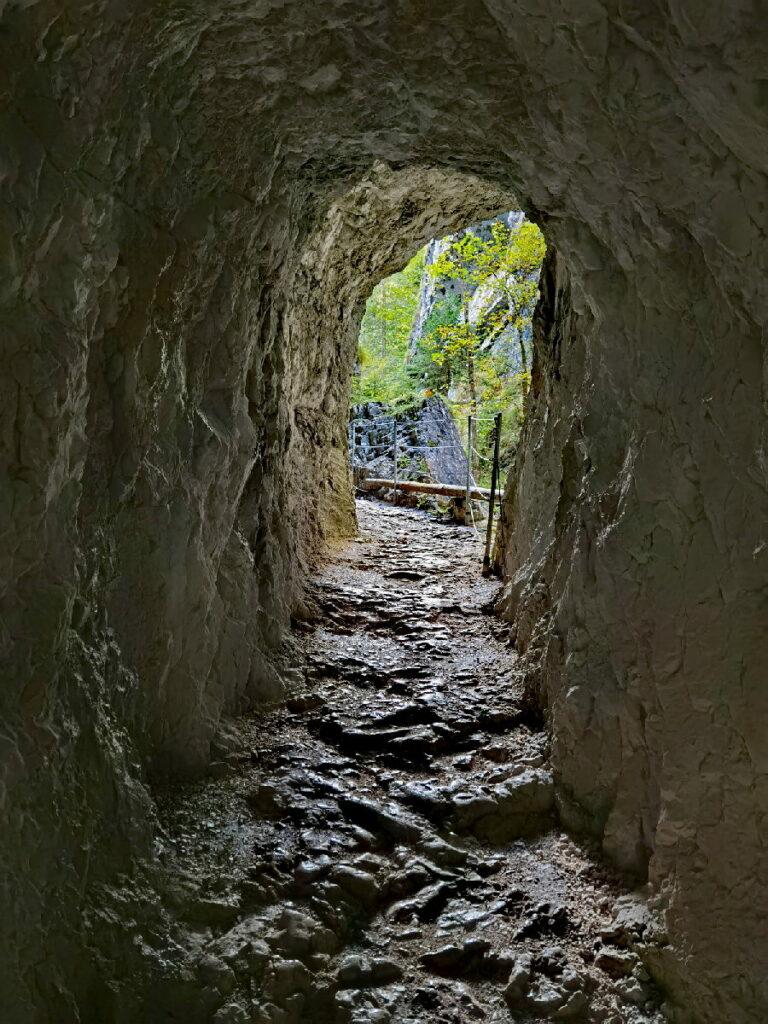 Durch diesen Tunnel musst du am Eingang in der Kaiserklamm wandern